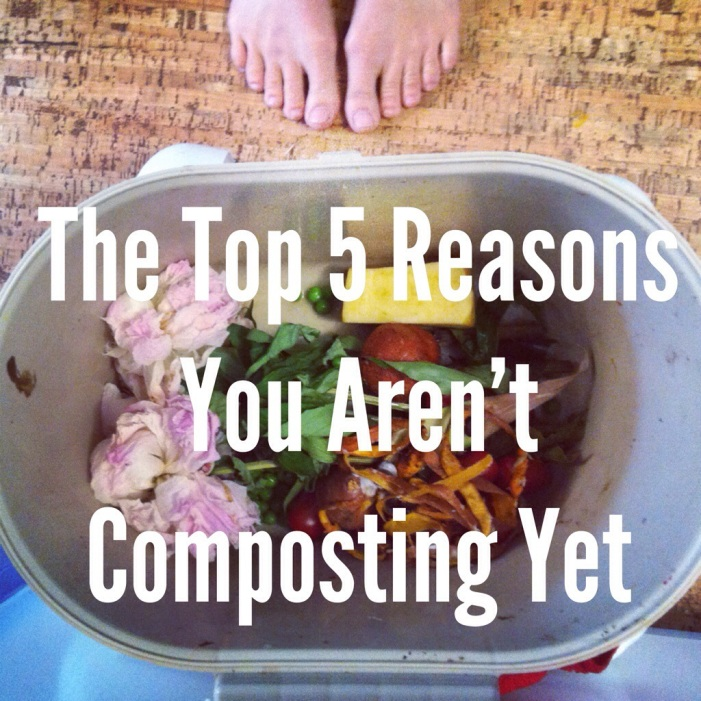 The Top 5 Reasons You Aren't Composting Yet  - AllYouNeedIsLess.ca